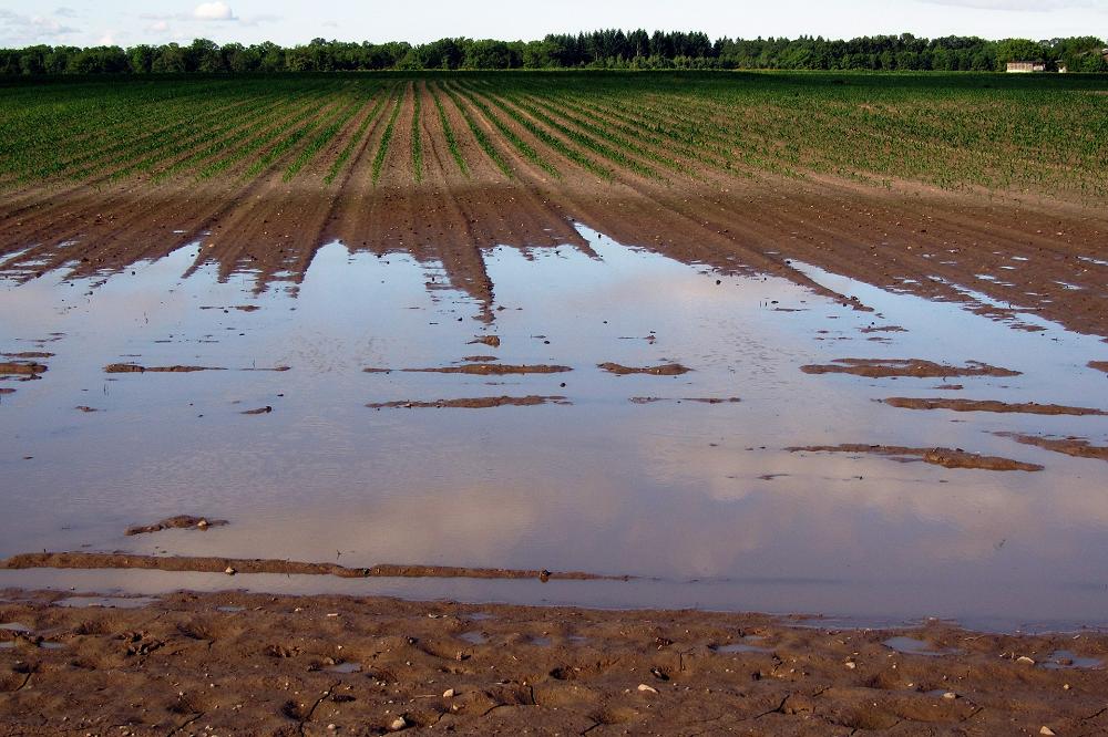 Rampenfonds: SALV vraagt coherent adaptatiebeleid