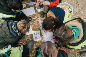 Boerderleren: leerlingen groeien op de boerderij