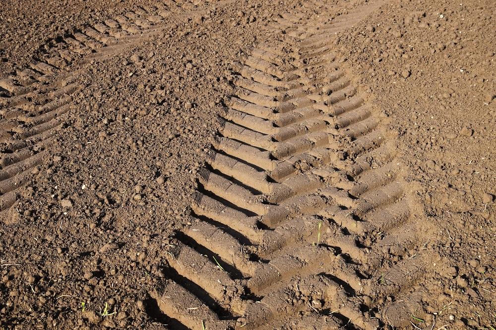 Klimaatgerichte landbouw zal meststoffenverliezen in de bodem beperken