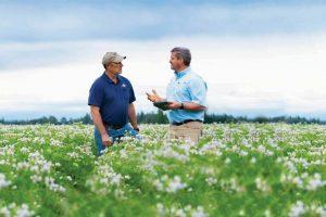 Biostimulanten: Vier vragen en antwoorden