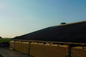 Budget om asbest in landbouwdaken te verwijderen opgetrokken